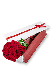 18 Long Stem Roses Presentation Box